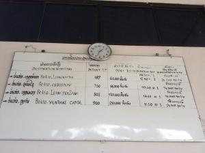 Horario buses para Luang Namtha